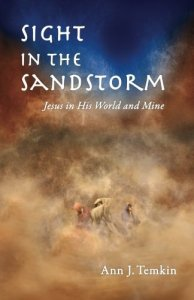 Sight in the Sandstorm: Jesus in His World and Mine